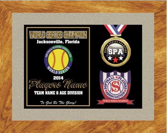 Picture of World Series Champion Custom Frame Award