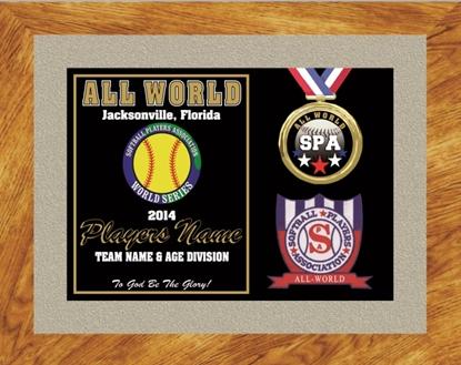 Picture of All World Custom Frame Award